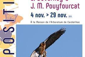 Exposition Rapaces et grande faune de montagne à Cardeilhac